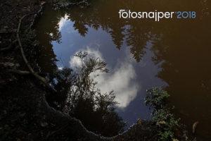 Konkurs fotograficzny Fotosnajper Roku 2018 – do 15 stycznia 2019