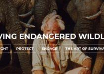 Konkurs fotograficzny Wildlife Artist of the Year – do 18 lutego 2019