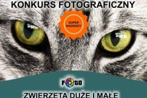 """Konkurs fotograficzny """"ZWIERZĘTA DUŻE I MAŁE"""