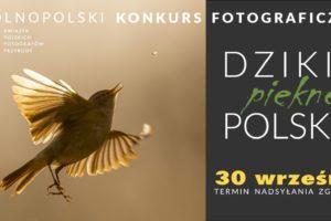 """""""Dzikie, piękne, polskie""""do 30 września 2021"""