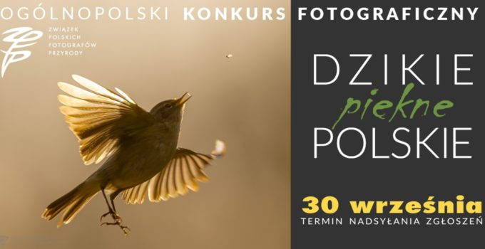 dzikie-piekne-polskiedo-2021