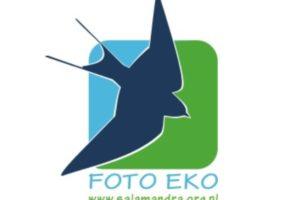 FOTO-EKO do 15 października 2021